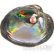 Palau OYSTER CYRTONAIAS TAMPICOENSIS series SEA TREASURES $5 Silver Coin 2013 Convex hologram Shell shape Pearl inserted